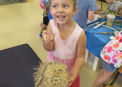 Incursions Gallery - 4 year old group - Seaweed Sally