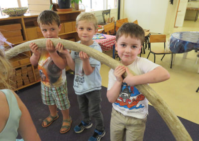 Incursions Gallery - 4 year old group - Seaweed Sally 6