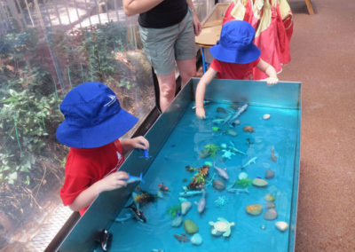 Outdoor-Gallery--Aquarium