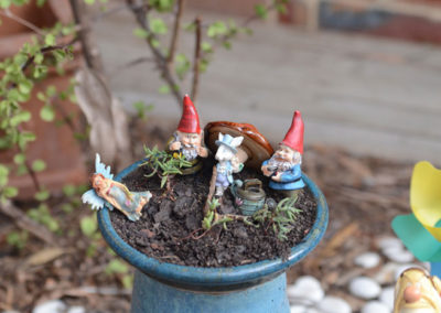 Outdoor-Gallery---Fairy-Garden